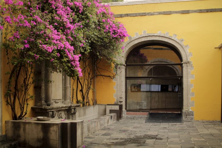 centro de la imagen, historical center, photo production, workshops, publications, seminars, photography, gallery. photo exhibitions, publicaciones, fotografias, exposiciones, centro historico, cdmx, guica oca